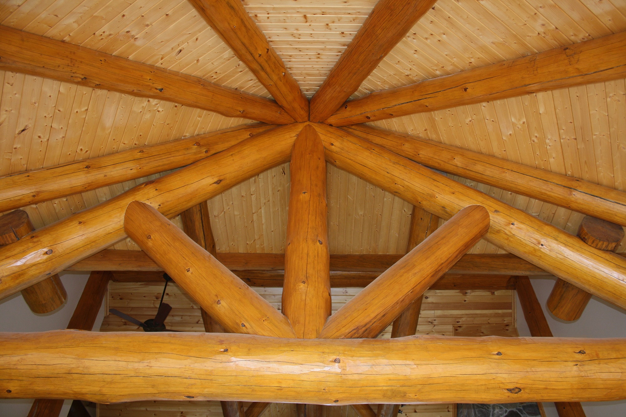 Incredible log joinery for roof